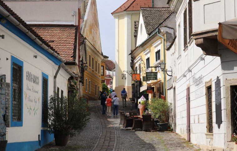 traditional old cobblestone street with pot plants and buildings