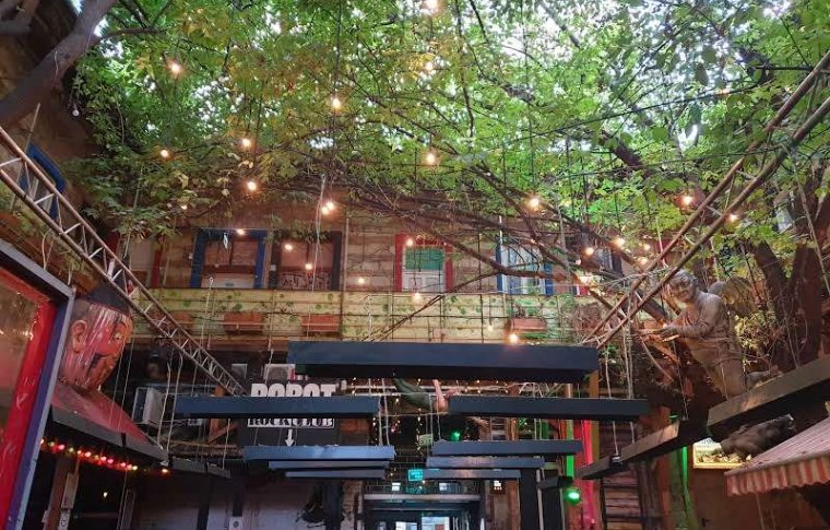Open roof ruin bar with lights hanging from an overhanging tree.