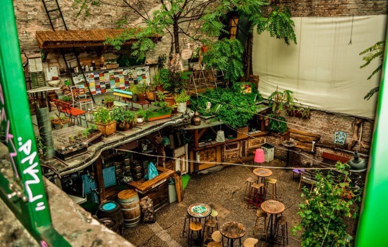 A plant filled and eclectic ruin bar.