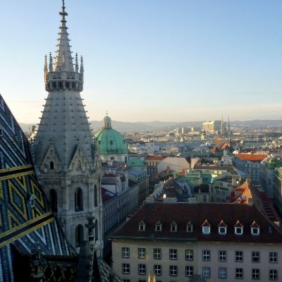 aerial view of vienna with church in foreground